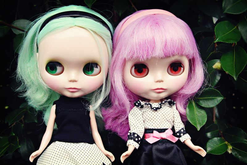 Clover and valentine